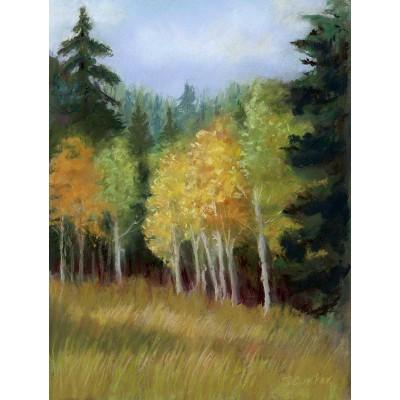 Cedar Mountain #3 - Pastel  by Debra Kay Carter