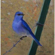 Mountain Bluebird on a Fence - Pastel  by Debra Kay Carter