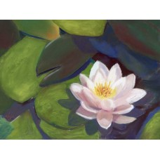 Water Lily - Pastel by Debra K. Carter